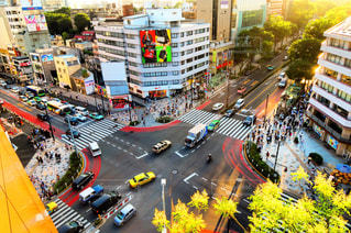 東京の写真・画像素材[555346]