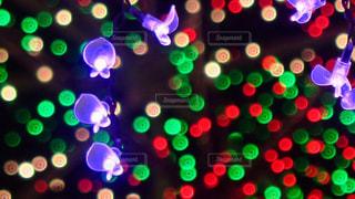 クリスマスイルミネーションの写真・画像素材[902707]