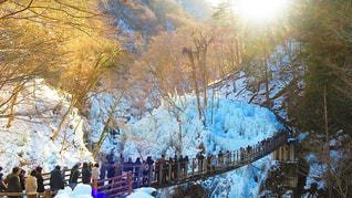氷柱の上の吊り橋の写真・画像素材[1011573]