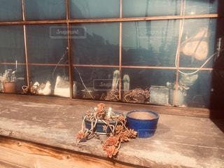 窓ぎわの多肉植物の写真・画像素材[2963941]