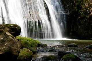 滝の写真・画像素材[2978001]