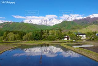 水田に映る風景の写真・画像素材[3216122]