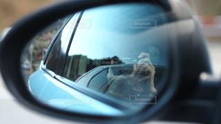 車のサイドミラーの写真・画像素材[2937940]