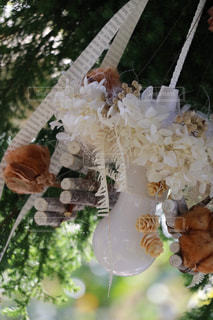 花のクローズアップの写真・画像素材[3039940]