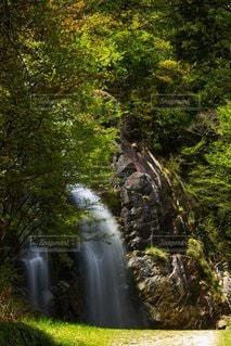 滝の写真・画像素材[3194643]