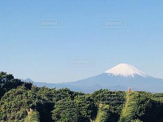 冬晴れと富士山の写真・画像素材[2968041]