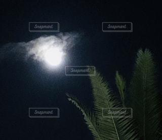 海辺の月光の写真・画像素材[2970464]