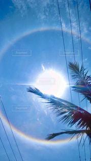 太陽の輪の写真・画像素材[3001413]