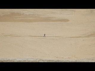 砂浜の近くの写真・画像素材[2963662]