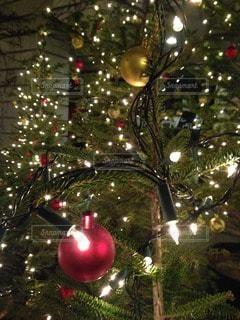 クリスマスのオーナメントの写真・画像素材[118808]