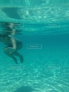 水中写真の写真・画像素材[118815]