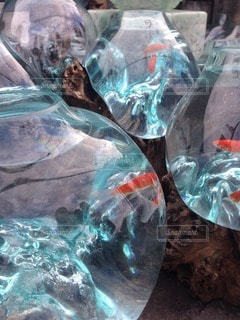 不思議な金魚鉢の写真・画像素材[118817]