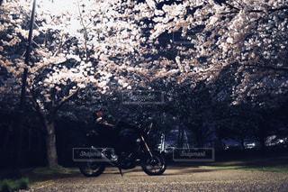丘を下るオートバイに乗っている人の写真・画像素材[3099233]
