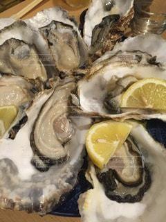 牡蠣の写真・画像素材[114073]