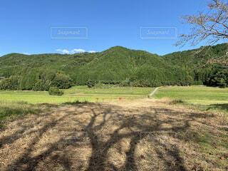 青空と山と木の影の写真・画像素材[3876429]