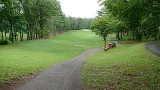 ゴルフ場の中の小道の写真・画像素材[2998971]