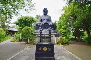 乗蓮寺の東京大仏の写真・画像素材[4064359]