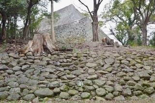 丸亀城の高石垣の写真・画像素材[4128301]