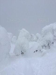 雪 - No.115933