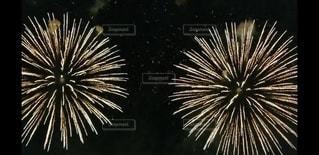 空の花火の写真・画像素材[2986929]