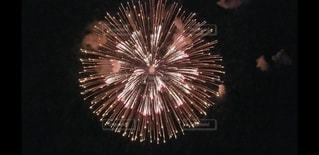 空の花火の写真・画像素材[2986932]