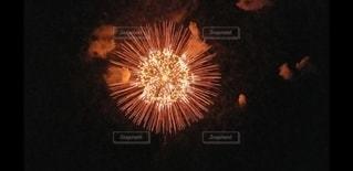 花火の写真・画像素材[2986935]
