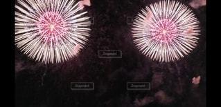 空の花火の写真・画像素材[2986937]