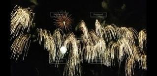 空の花火の写真・画像素材[2986936]