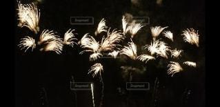 花火の写真・画像素材[2986938]