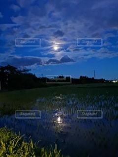 水面に写る月の写真・画像素材[2987153]