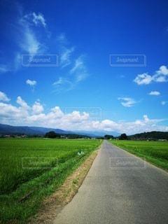 田舎道の写真・画像素材[2988014]