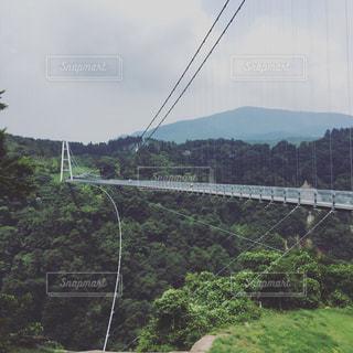 吊橋の写真・画像素材[2992589]