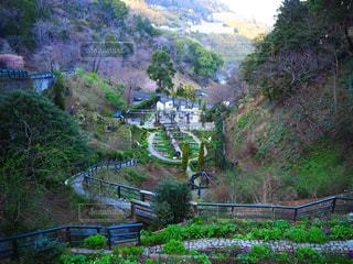 ジブリ風ガーデンの写真・画像素材[2989953]