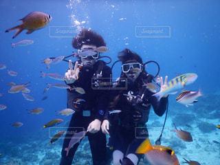 魚たちとの写真・画像素材[3013763]