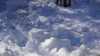 雪の写真・画像素材[2993782]