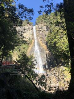 森の中の大きな滝の写真・画像素材[2993790]