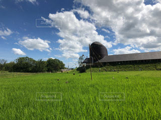 畑の写真・画像素材[2993794]