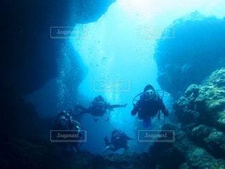 ダイビングの写真・画像素材[2996430]