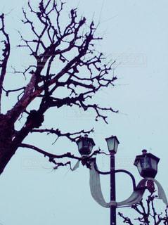 風景 - No.122358