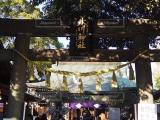 川越氷川神社の写真・画像素材[3005612]