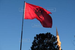アルバニア国旗の写真・画像素材[3021052]