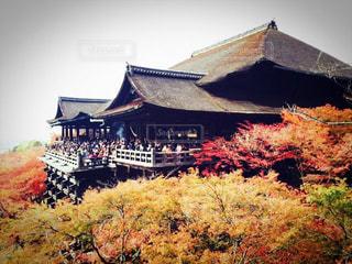秋の写真・画像素材[129955]