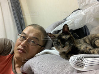 ベッドに横たわる人と猫の写真・画像素材[3013528]