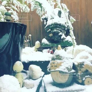 雪の写真・画像素材[116363]