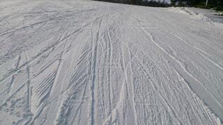 冬の写真・画像素材[125904]