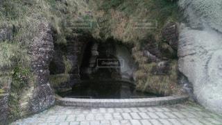 自然の写真・画像素材[125977]