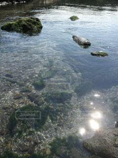 海の写真・画像素材[117644]