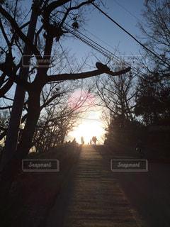 夕日の写真・画像素材[122351]