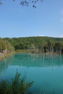 自然の写真・画像素材[379764]