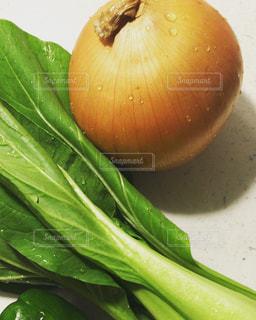 新鮮な野菜たちの写真・画像素材[3017288]